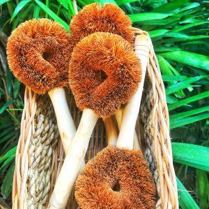 Coconut Fiber Brush