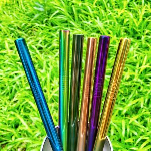 Colored Stainless Milk tea Straw (Solo)