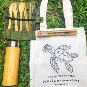 Earth Warrior Starter Pack – Sea Turtle