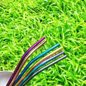 Colored Stainless Bent Straw (Solo)