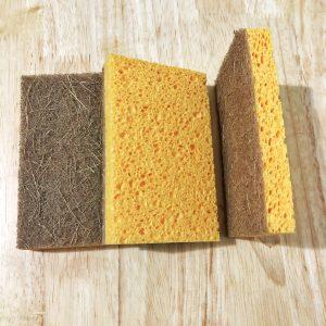 Coco Sponge Set (3pcs)
