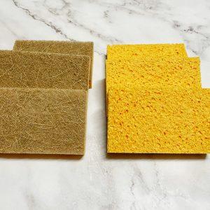 Coco Sponge